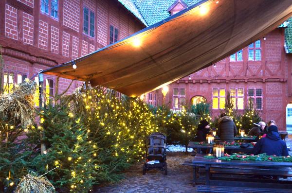 Odense Christmas 11
